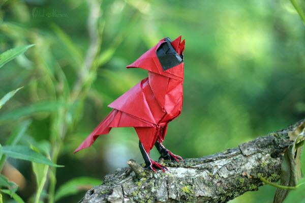 origami_singing_cardinal_by_foldedwilderness